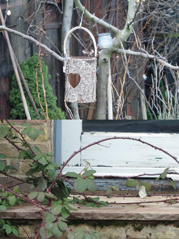 In Faversham harbour, (top) bare branches are decorated to make a twiggy still life; (bottom) a bramble stealthily invades little-used steps