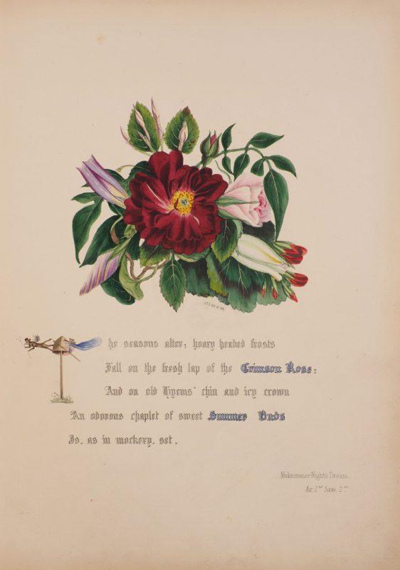 Antiquarian bookseller. Illustration by Jane Elizabeth Giraud, Flowers of Shakspeare, 1845.