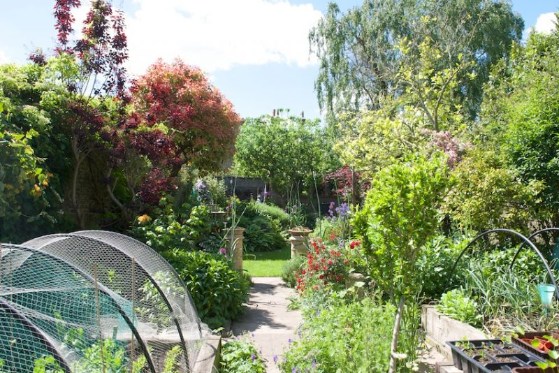 A long and slender garden divided into distinct areas