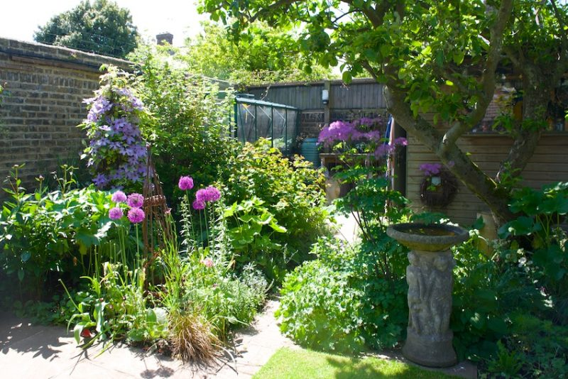 17 Norman Road: a garden packed with interest and character