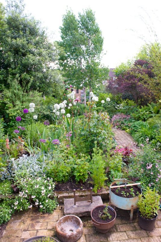 A view down the garden at 19 Newton Road
