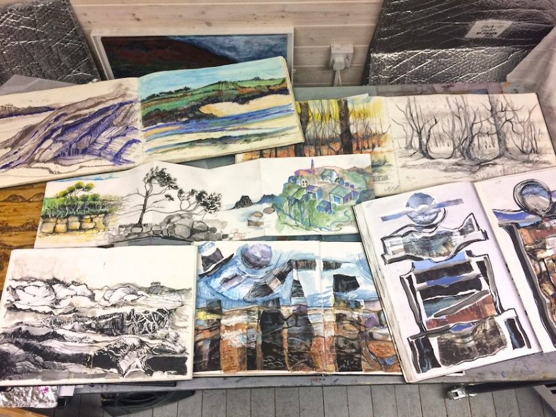 A selection of Artist, Ruth McDonald's sketchbooks
