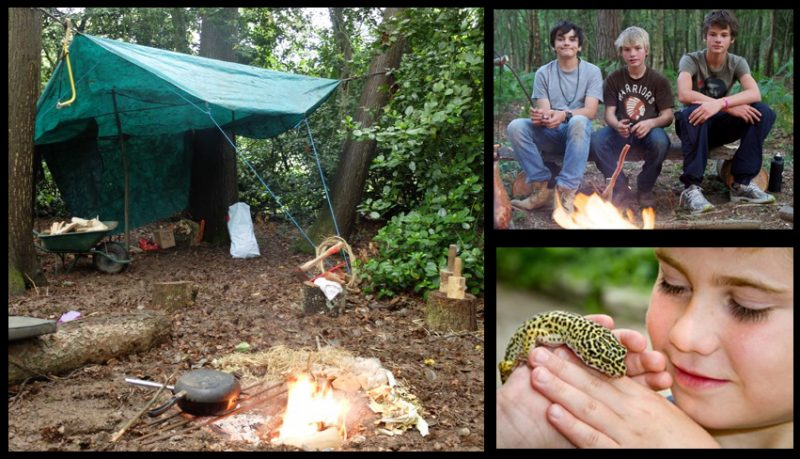 Bushcraft in the woodland garden and creepy crawlies