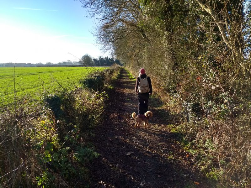A winter walk around Faversham