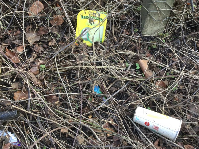 Non-degradable plastic waste lying in the verges of Love Lane