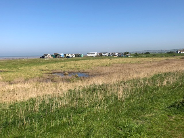 walk on the marshes: