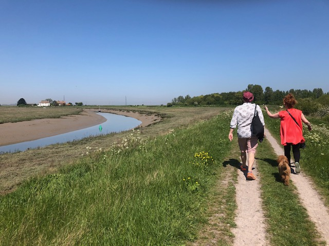 Walk on the marshes: Walking up the east side of Faversham Creek to Nagden