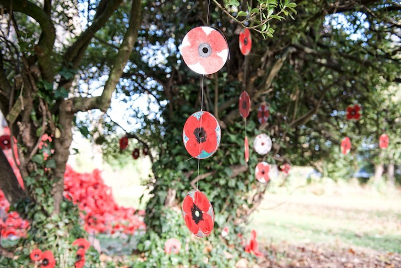 CDs painted with poppies