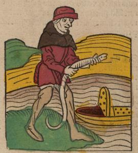 1491 Ortus Sanitatis: Catching eels