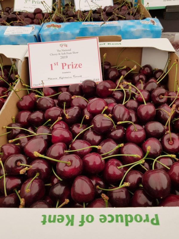 Mount Ephraim's cherries win first prize in The Kent County Show last weekend