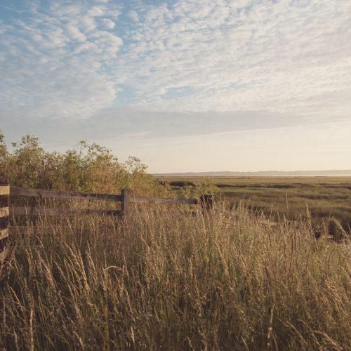 Sunrise at Elmley Nature Reserve