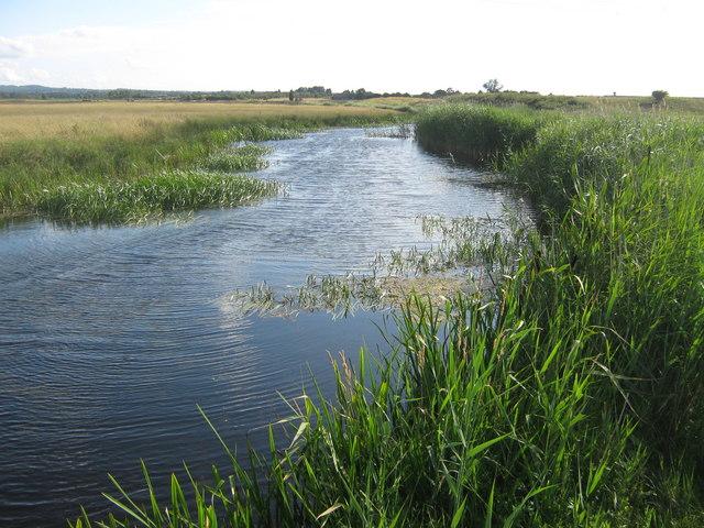 Dyke in Graveney Marshes © David Antiss