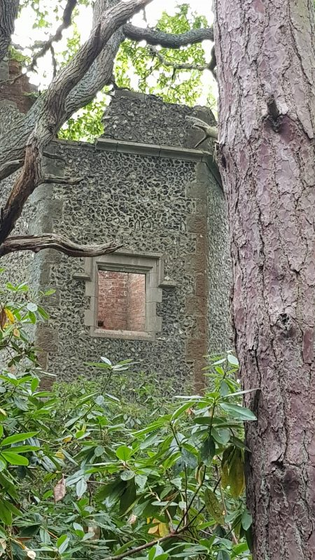 A tantalising glimpse of the Dawes tower