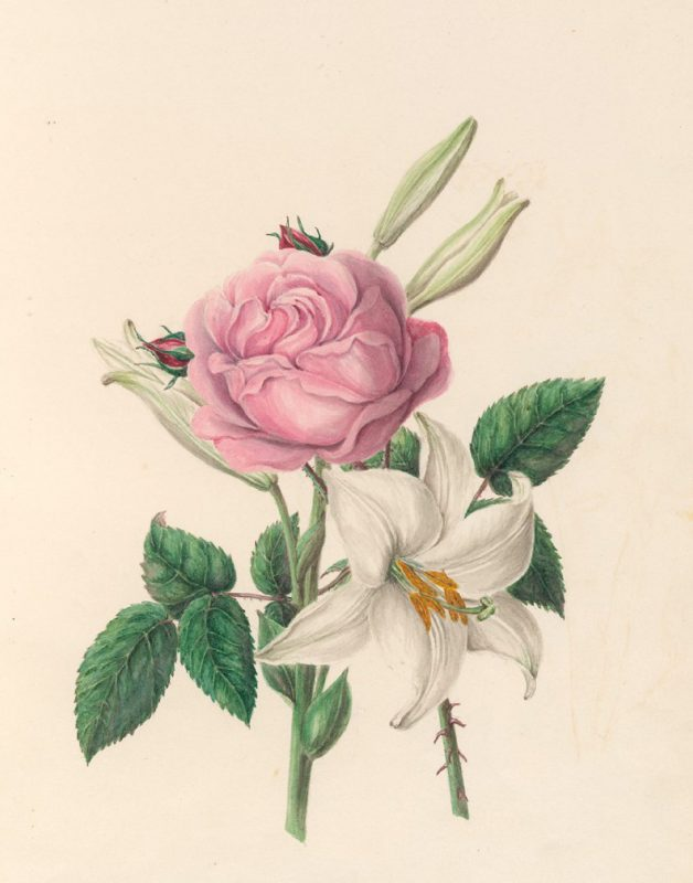 Watercolour from Fete of the Flowers